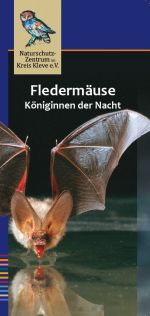 Cover des Flyers Fledermäuse